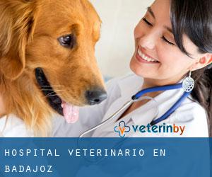 Hospital veterinario en Badajoz