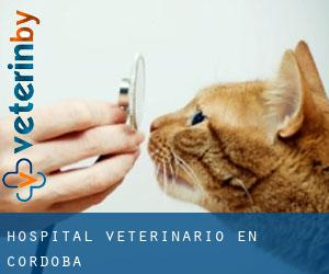 Hospital veterinario en Córdoba