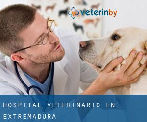 Hospital veterinario en Extremadura