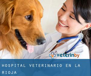 Hospital veterinario en La Rioja