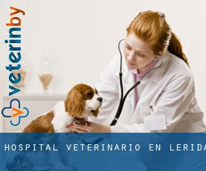 Hospital veterinario en Lérida