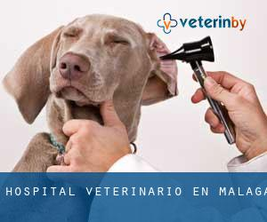 Hospital veterinario en Málaga