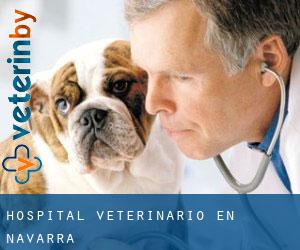 Hospital veterinario en Navarra