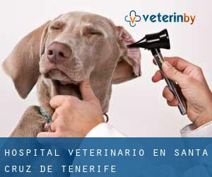 Hospital veterinario en Santa Cruz de Tenerife