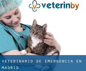 Veterinario de emergencia en Madrid
