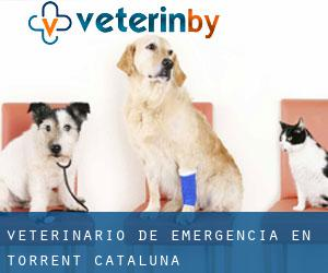 Veterinario de emergencia en Torrent (Cataluña)