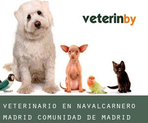 veterinario en Navalcarnero (Madrid, Comunidad de Madrid)