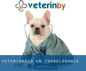Veterinario en Torrelodones